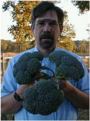 broccoli heads