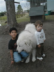 grandchildren and klondike